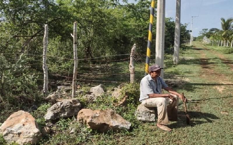 San Ignacio Tesip_Sol Yucatán